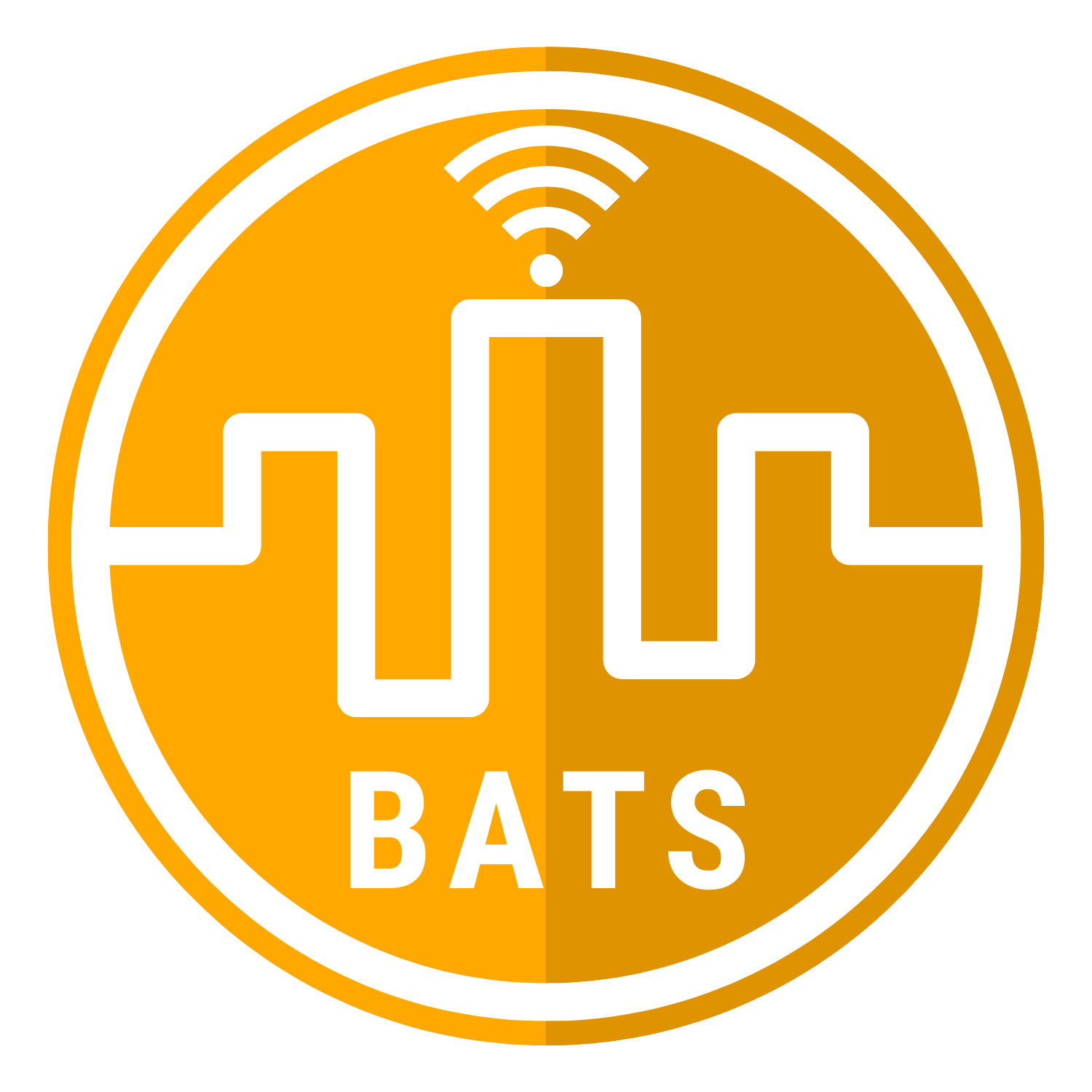 BATS Website Design and Technology Analytics